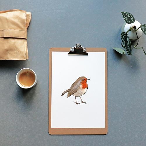 Detail vogel tuin roodborst natuur dieren educatief